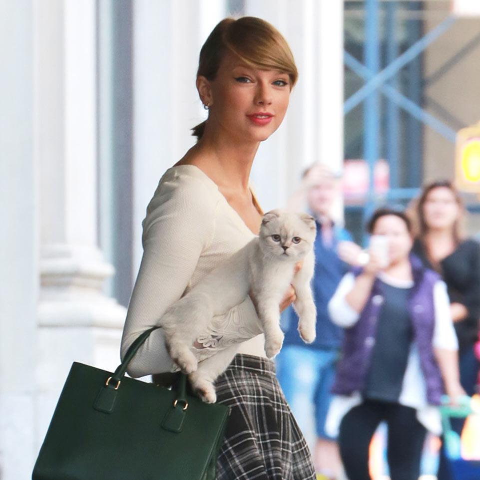 Taylor Swift và mèo Meredith